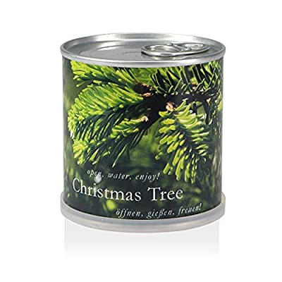Weihnachtsbaum aus der Dose