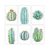 Ensemble de 6 affiches de décoration murale Cactus 11x17 | Parfait pour chambre ou salle de bain | Imprimés botaniques pour le mur végétal | Décorations de grandes fleurs
