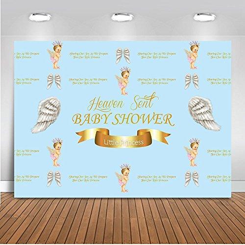 Mehofoto Baby Shower Foto Kulisse 7 x 5 ft Neugeborenen Hintergrund kleine Prinzessin Baby Engel Hintergrund für Fotografie