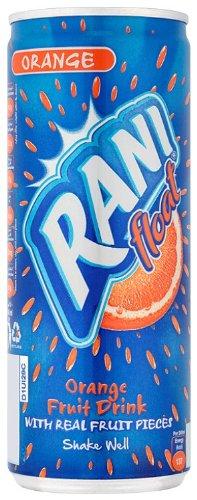 Rani Natural Orange Float Drink 240 ml (Pack of 24)