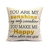 Fashion Home_UK Decorative Inspirational Quotes Pillow Cover Personalized Custom Cotton Linen Pillowcase-You Are My Suns