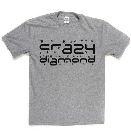 Crazy Diamond Track Song 1993 T-shirt Aschgrau