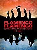 Flamenco, Flamenco [Spanien Import]
