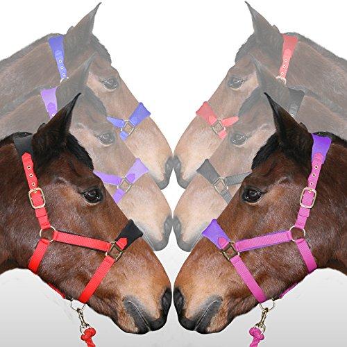 Weich Vlies Gepolstert Verstellbar Halfter / Halfter UND Tigerbox Antibakteriell Stift - Pink & Lila, Normales Pferd