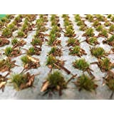 WWS Forest Ground Cover Verano 4mm Autoadhesivo Hierba Estática Tufts x 100