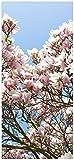 Wallario Selbstklebende Türtapete Schöne rosa Magnolien-Blüten vor blauem Himmel - 100 x 220 cm in Premium-Qualität: Abwischbar, Brillante Farben, rückstandsfrei zu entfernen