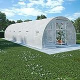 Festnight Giardino e giardinaggio
