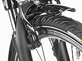 Fischer Proline ETH 1606 Herren E-Bike Trekking 24-Gang, 28 Zoll, 19173 - 12