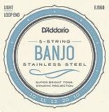 D'Addario EJS60 Banjo 5-Saiter Satz Loop End/Light