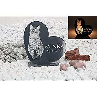 'Memorial Plaque/Graveside Memorial Personalised Engraved Freeze Frame/Photo Engraving High Shine Acrylic Assorted Colours Tombstone Plate DIY Ornament for Dogs, Cats and Horses 51ZhN1FdbkL