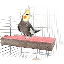 Percha de madera para jaula de mascotas, conejos, periquitos, guacamayos, loros, hámster, jerbo; accesorio para ejercicio