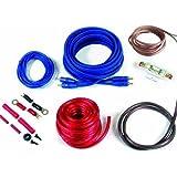 Watermark CK-1000 - Cable de amplificador de potencia para sistema de audio de coche con cable RCA (10 mm²)