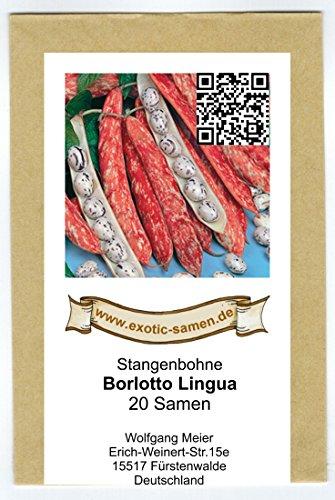 Stangenbohne - Borlotto Lingua Di Fuoc - 20 Samen (Bohne Samen Lila)