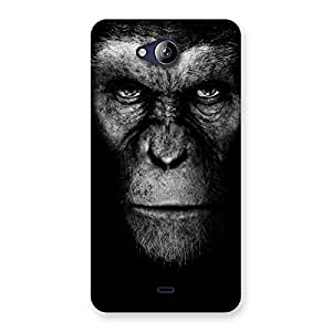 Black King Chimp Back Case Cover for Canvas Play Q355