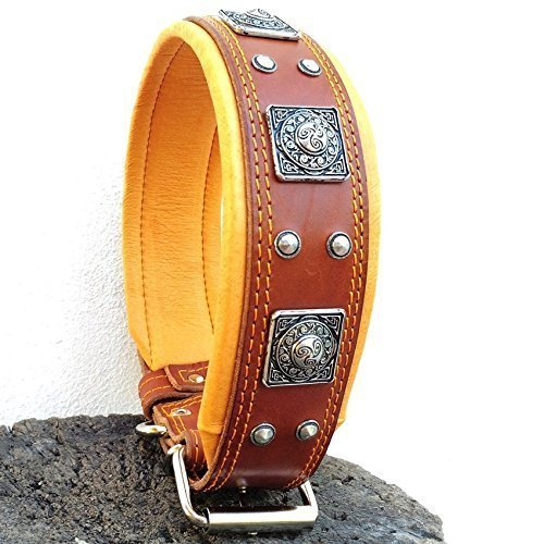 Bestia genuine leather dog collar, Large breeds, cane corso, Rottweiler, Boxer, Bullmastiff, Dogo, Quality dog collar, 100% leather, studded, L- XXL size, 2.5 inch wide. padded. Made in Europe! (L - fitting a neck of 50- 60 cm (19.7 to 23.6 inch))