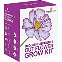 Blooming Bouquet Seed Growing Kit Gift Box - Grow Your Own Cut Flowers, Gypsophila, Cosmos, Asters and Verbena Seeds with Growing Equipment, Perfect Gardeners Gift by Thompson and Morgan