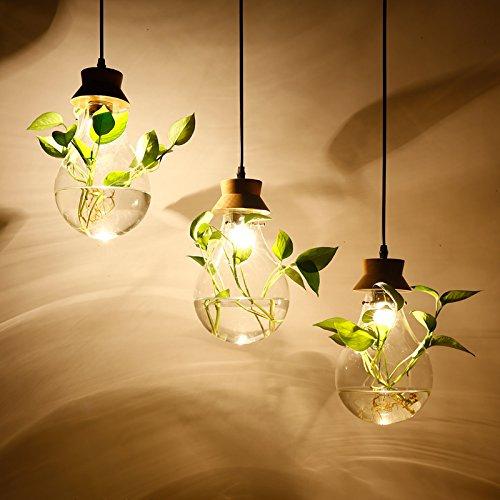 jardin-de-lustre-de-chevet-lustre-moderne-chinois-restaurant-creatif-verre-propre-des-plantes-aquati