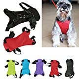 XCSSKG - Cinturón de Seguridad para Perro, Gato o Mascota, Tamaño Grande (50 cm – 70 cm, Pecho 65 cm – 80 cm)
