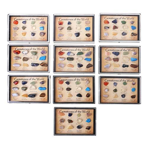 Lamdoo Colección de Rocas 12pcs Muestras de minerales minerales Naturales Mezclados Piedras Preciosas con Caja