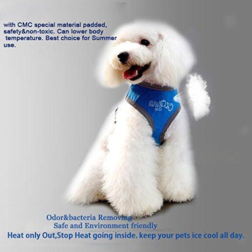 ELECTROPRIME Dog Harness Cooling Padded Vest Belt Safe Reflective Walking Collar Strap S