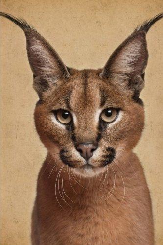 Regal Caracal Wild Cat Portrait Journal: 150