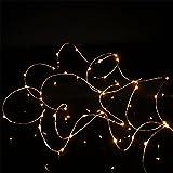 Lichterkette Außen, HUIHUI Wasserdicht 2M 20 LEDs Kupferdraht Lichterkette batteriebetrieben für Party, Garten, Weihnachten, Halloween, Hochzeit, Indoor & Outdoor Decor (Beige,One size)