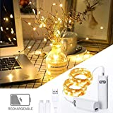 Luci Stringa Ricaricabili Catene Luminose 2M 20 LED Luci Bottiglia Illuminazione Giardino con Interruttori per DIY Festa Natale Matrimonio, Bianco Caldo [Efficienza Energetica A+++]