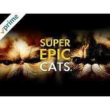 Super Epic Cats