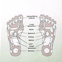tfxwerws 1Paar Massage Einlegesohlen Fuß Thenar Schuh Pads preisvergleich bei billige-tabletten.eu