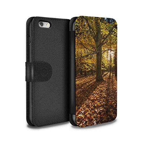 Stuff4 Coque/Etui/Housse Cuir PU Case/Cover pour Apple iPhone 6 / Des Bois Design / Automne Saison Collection Forêt