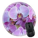 MSD Naturkautschuk Mousepad Bild-ID 35078882Stück Teakholz Halblange Hintergrund 3488