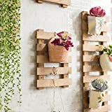 Fu Man Li Trading Company Parrilla de flores Pared de madera maciza que cuelga el salón flor pared marco balcón que cuelga la combinación de la pared verde que planta el estante del pote A+ ( Color : Marrón , Tamaño : Pequeño )