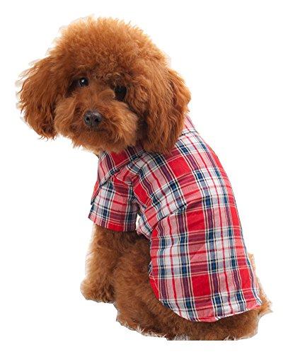 s-lifeeling Lovely Pet Kleidung Rot Blau T-Shirt Pet Supplies Spring Summer Innen Reise Hund (Big Scary Clown)