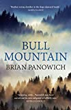 Front cover for the book Bull Mountain by Brian Panowich