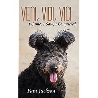 Veni, Vidi, Vici: I Came, I Saw, I Conquered (English Edition)