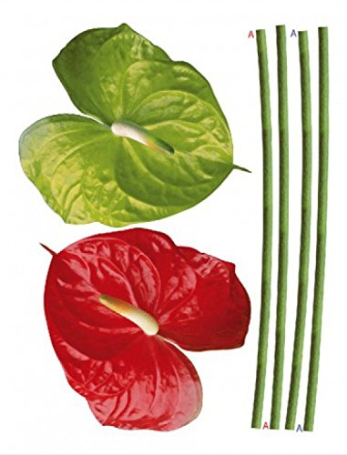 flores-red-and-green-flamingo-lilies-pegatina-para-pared-85-x-65cm