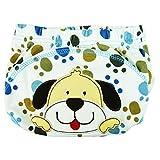 HaimoBurg 6er Pack Wasserdicht Baby Lernwindel Trainerhosen Unterwäsche Windeln Windelhose zum Toilettentraining Töpfchentraining (100, 6 Pack Jungen) Test