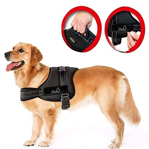 LIFEPUL Powergeschirr Brustgeschirr für Aktive Hunde, Hals- und Schulterbereich Weich Gepolstert Größe M, Schwarz