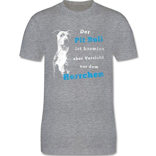 Shirtracer Hunde - der Pit Bull ist Harmlos aber Vorsicht vor dem Herrchen - Herren T-Shirt Rundhals Grau Meliert