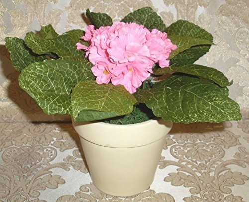lumida-flora-leuchtende-blumen-usambara-veilchen-mit-ubertopf-farbepink