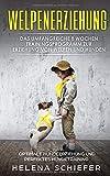 Welpenerziehung: Das umfangreiche 8 Wochen Trainingsprogramm zur Erziehung von Welpen und Hunden!...