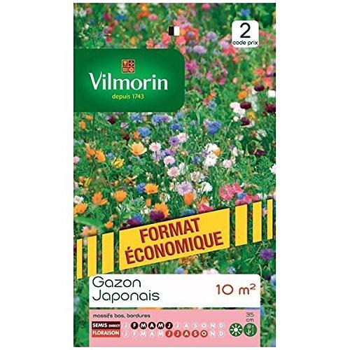 Vilmorin - Sachet graines Gazon Japonais surface 10m²