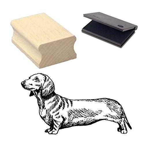 « perro salchicha de pelo corto » Diseño sello con cojín Scrapbooking–Embossing–Manualidades–Perro