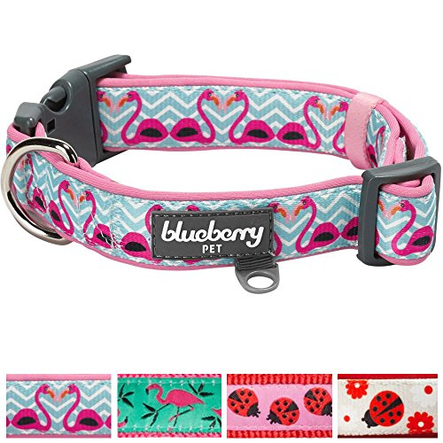 blueberry-pet-soft-comfy-hawaii-dream-valentine-flamingo-love-neoprene-padded-dog-collar-small