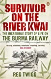 Best Books On Vietnam Wars - Survivor on the River Kwai: The Incredible Story Review