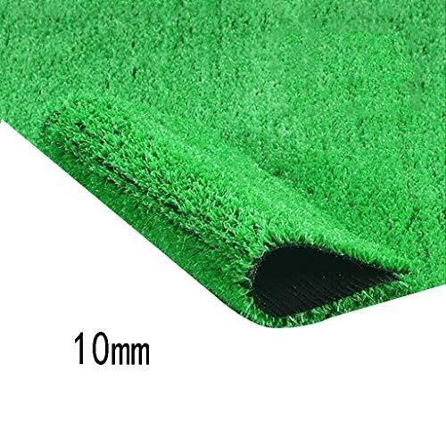 XEWNEG Garten Kunstrasen, 10mm Fälschungs Mat Verschlüsselte, Wasserfest Und Schwer Entflammbar, Geeignet for Outdoor-Balkon/Tier Teppich Mat (Size : 2x5M)