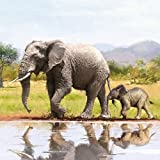 Ambiente Elephant – Servietten 33x33 cm
