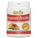 Papaye 390 mg - 200 gélules