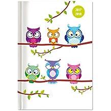 Collegetimer Owls 2017/2018 - Schülerkalender A5 - Day By Day - 352 Seiten
