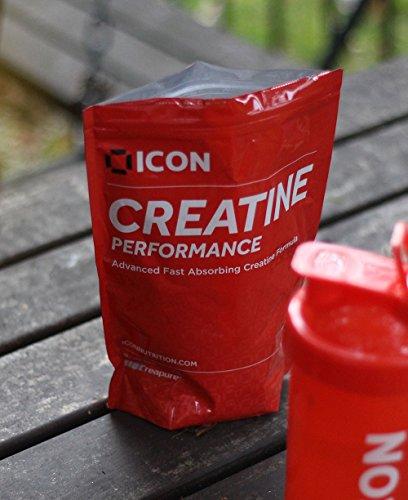 ICON Nutrition – Creatine Performance, Dextrose & Creapure Blend, 540g – Fruit Punch